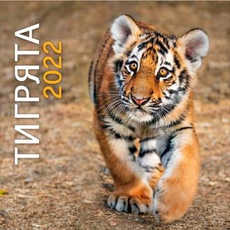 Календарь настенный Тигрята 2022