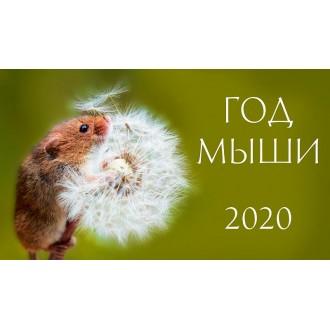 Календарь настольный Год мыши 2020