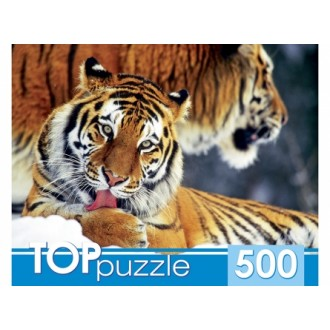 TOPpuzzle. ПАЗЛЫ 500 элементов. КБТП500-6797 Два тигра