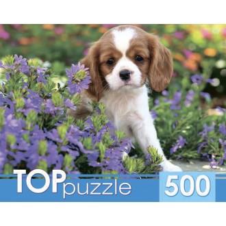 TOPpuzzle. ПАЗЛЫ 500 элементов. ГИТП500-4200 МИЛЫЙ СПАНИЕЛЬ