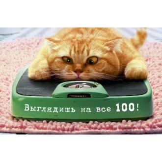 ВЫГЛЯДИШЬ НА ВСЕ 100!